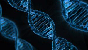 BioKnowledge