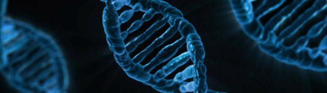 Proteome BKL® – BioKnowledge Library